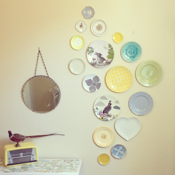 mozi plate display