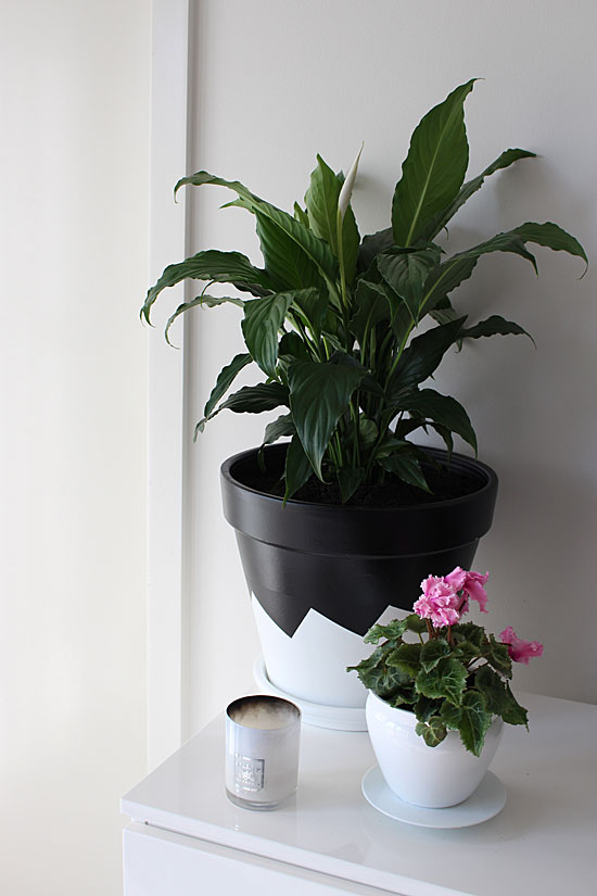 diy black and white painted pot