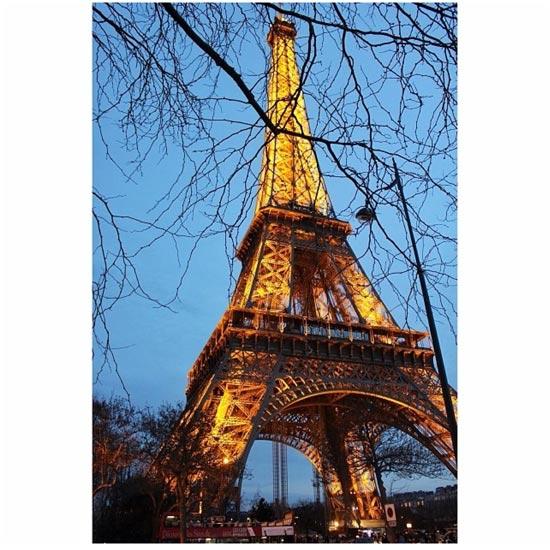 the eiffel towel lights in Paris